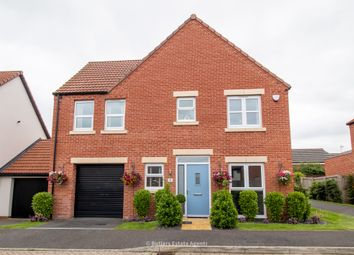 Thumbnail 4 bed detached house for sale in Red Pine Close, Clowne, Chesterfield