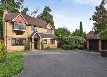 Thumbnail 4 bed detached house to rent in Heathcote, Maidenhead