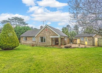 Thumbnail 3 bed detached bungalow for sale in Alcocks Close, Kingswood, Tadworth