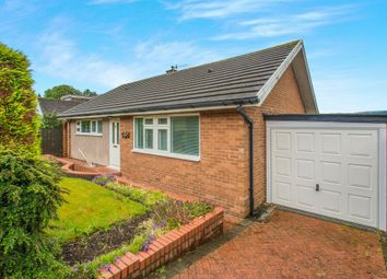 Thumbnail 2 bedroom detached bungalow for sale in High Close, Llanfrechfa, Cwmbran