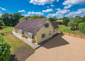 Thumbnail 6 bed property for sale in Alphamstone, Bures, Suffolk