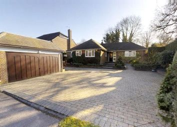 Thumbnail 4 bed detached bungalow for sale in Lime Tree Close, Bookham, Leatherhead, Surrey