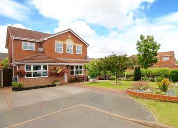 Thumbnail 4 bedroom detached house for sale in Sandford Brook, Hilton, Derby