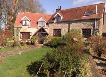 Thumbnail 4 bed property to rent in Rodden, Frome, Somerset