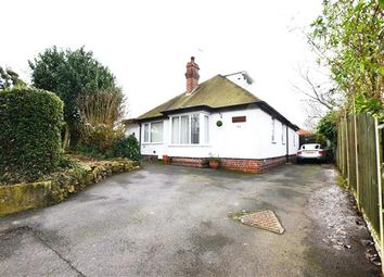 Thumbnail 4 bed detached bungalow for sale in Church Lane, Hanford, Stoke-On-Trent