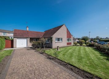 Thumbnail 4 bed bungalow to rent in Craigleith Avenue North, Edinburgh