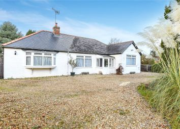 Thumbnail 4 bedroom bungalow to rent in Medstead, Alton, Hampshire