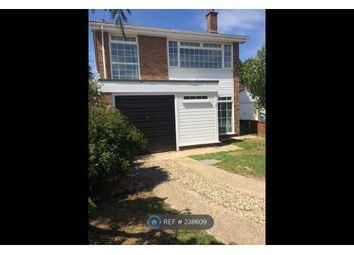 Thumbnail 4 bedroom detached house to rent in Grantham Road, Colchester