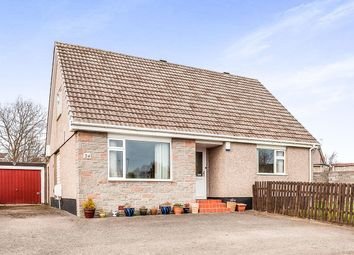 Thumbnail 4 bedroom detached house for sale in Malcolm Crescent, Monifieth, Dundee