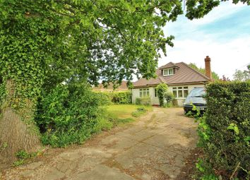 Thumbnail 4 bed detached bungalow for sale in Chobham, Woking, Surrey