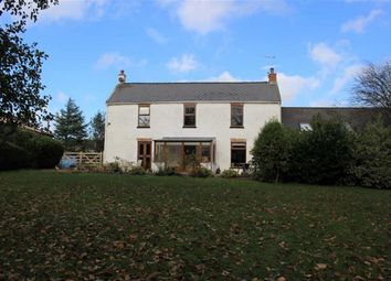 Thumbnail 4 bed semi-detached house for sale in Golden Lane, Pembroke