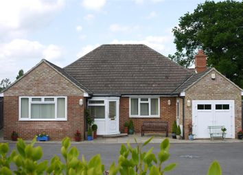 Thumbnail 3 bed detached bungalow for sale in Rother Close, Petersfield