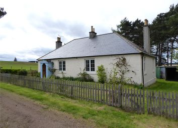 Thumbnail 3 bed detached house to rent in Errol Cottage, Blackhills, Elgin, Moray