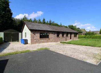 Thumbnail 4 bed detached bungalow for sale in Warenford, Nr Belford, Northumberland