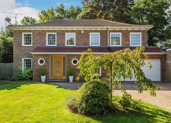 Thumbnail 5 bed detached house for sale in Blandford Close, Woking
