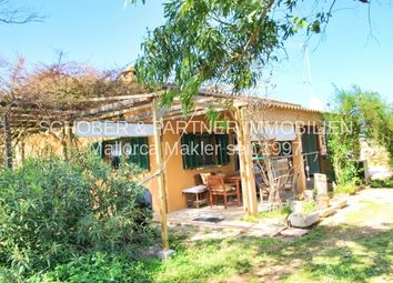 Thumbnail 4 bed cottage for sale in 07450, Santa Margalida, Spain