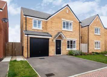 Thumbnail 4 bed detached house for sale in Clovelly Drive, Hampton, Peterborough