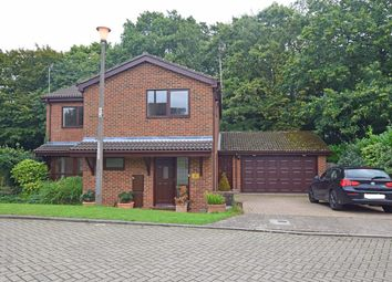 Thumbnail 4 bedroom detached house to rent in Magdalen Close, Hempstead