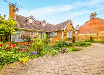 Thumbnail 6 bed bungalow for sale in High Road, High Cross, Ware