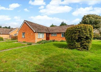 3 bed bungalow for sale in Bentley Close, Winchester, Hampshire SO23
