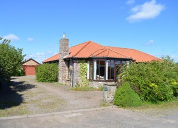 Thumbnail 4 bed bungalow for sale in Unthank, Berwick Upon Tweed, Northumberland