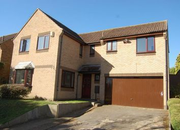 Thumbnail 4 bed detached house to rent in Ryefields, Spratton, Northampton