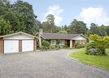 Thumbnail 3 bed detached bungalow for sale in Spinney Close, Cobham, Surrey