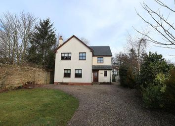 Thumbnail 4 bed detached house to rent in Gladstone Terrace, Main Street, Reston, Eyemouth