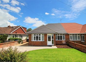 Thumbnail 3 bedroom bungalow for sale in Shirley Drive, Worthing, West Sussex