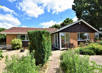 Thumbnail 3 bed detached bungalow to rent in Peterborough Avenue, Oakham