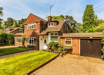 Thumbnail 5 bedroom detached house to rent in Pine Tree Hill, Pyrford, Woking