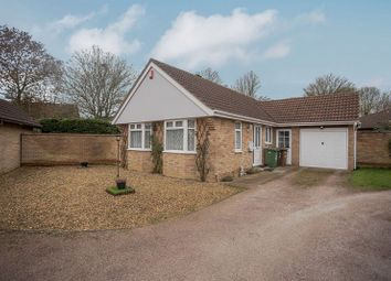 Thumbnail 2 bed detached bungalow for sale in Benyon Grove, Orton Malborne, Peterborough, Cambridgeshire.
