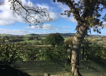 Thumbnail 3 bed detached bungalow for sale in Holcombe, Llandrindod Wells