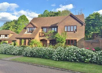 Thumbnail 5 bed detached house for sale in Barberry Way, Blackwater, Camberley
