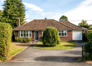 Thumbnail 3 bed detached bungalow for sale in Downs Road, South Wonston, Winchester, Hampshire