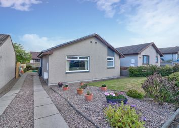 Wallace Crescent, Peterhead AB42. 3 bed detached bungalow