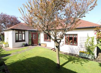 Thumbnail 3 bed detached bungalow for sale in Conifers, Hildersley Rise, Ross-On-Wye