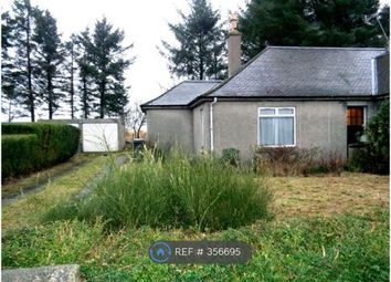 Thumbnail 3 bed bungalow to rent in Walton Road, Bucksburn, Aberdeen