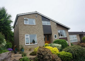Thumbnail 4 bed detached house for sale in Pennyfields, Bungay