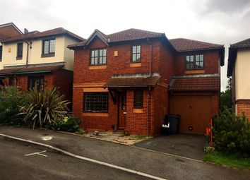 Thumbnail 4 bedroom property to rent in Tallow Wood Close, Paignton