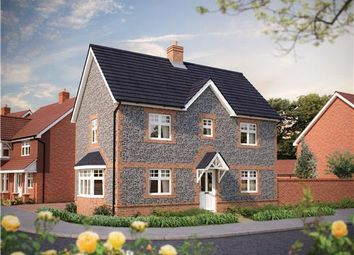 Thumbnail 3 bed detached house for sale in Burfield Grange, Park Road, Hellingly, Hailsham, East Sussex
