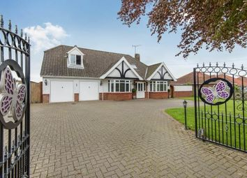 Thumbnail 4 bed detached house for sale in Newton St. Faith, Norwich, Norfolk