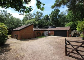 Thumbnail 3 bed bungalow for sale in Finchampstead, Wokingham