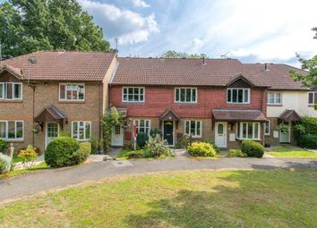 Thumbnail 2 bed property to rent in Mulberry Way, Heathfield
