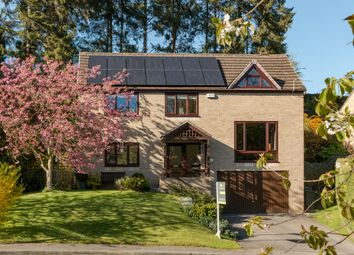 Thumbnail 4 bed detached house for sale in Mill Croft, Richmond
