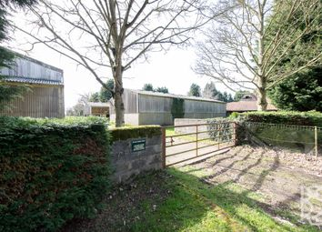 Thumbnail 3 bed detached house for sale in Popes Green Lane, Layham, Hadleigh
