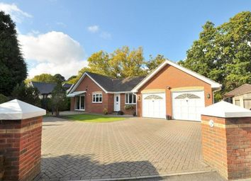 Thumbnail 3 bed detached bungalow for sale in Golf Links Road, Ferndown