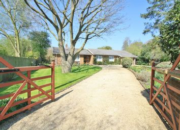 Thumbnail 4 bed detached bungalow for sale in Coach Way, Mill Lane, Benson, Wallingford