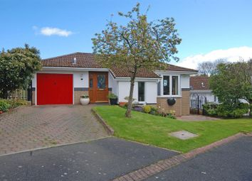Thumbnail 4 bed detached house for sale in Charlton Close, Hexham