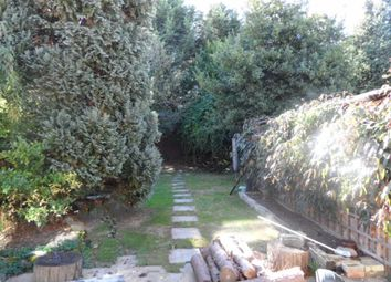 Thumbnail 3 bed semi-detached house to rent in Perne Avenue, Cambridge